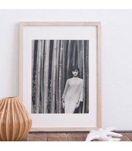 "Lámina vintage ""Bambou"""