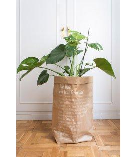 R-DISEÑO-SHOP-le-sac-en-kraft-brun-the-brown-paper-bag-costilla-adan-be-poles-3