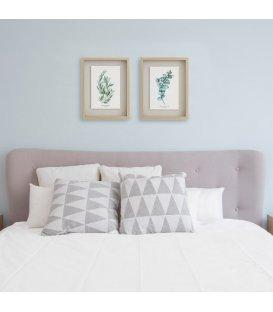 Cuadro lámina botánica eucalipto obliqua 30x40cm