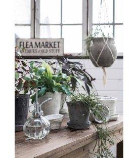 Pulverizador para plantas cristal y plateado