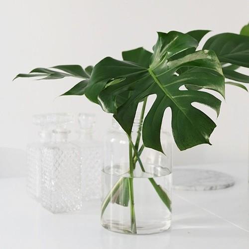 RDISENO jarrones con hojas verdes VÍA trendeser 02